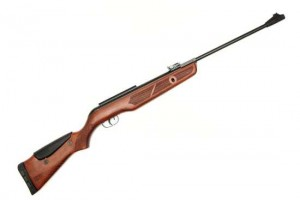 Gamo Hunter IGT